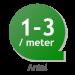 Dvärgliguster 'Lodense'  30-40cm